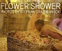 001-flower-front.jpg