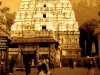 venkateshwara.jpg